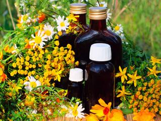 Terapia natural: Las plantas medicinales de una mujer