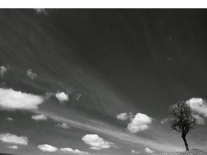 ECM New Series Releases Konstantia Gourzi - Anájikon - on April 30, 2021