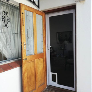 Security Screen with Cat flap