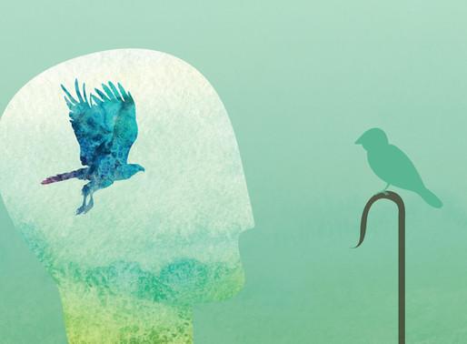 Logical Fallacy - Ngụy Biện Trong Lập Luận Là Gì? 10 Ví Dụ Thường Gặp Về Ngụy Biện
