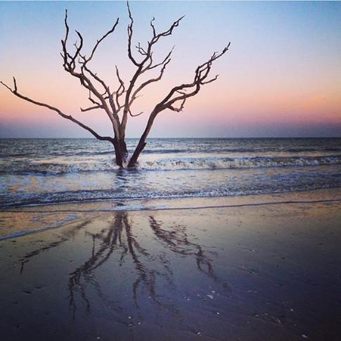 Edisto Island, South Carolina..jpg