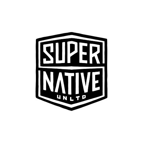 SNU logos (5).png