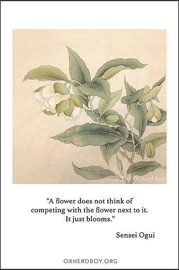 """""""Just Bloom"""" Postcard File"""