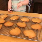 Honey Bunny Cookies