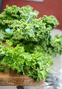 parsely kale 2.jpg