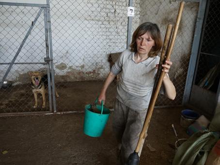 Hope for Ukraine's Street Animals