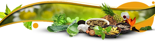 The Herbal Gardens   Natural Products