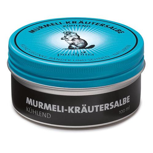 Murmeli Kräutersalbe kühlend 100 ml