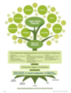 IFM Functional Medicine Tree