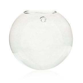 Glass Terrarium - Large Hanging Wall Bowl