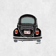 VW_type1.jpg