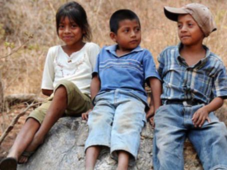 1/3 Migrant Children lost under POS Biden's Department of HHS
