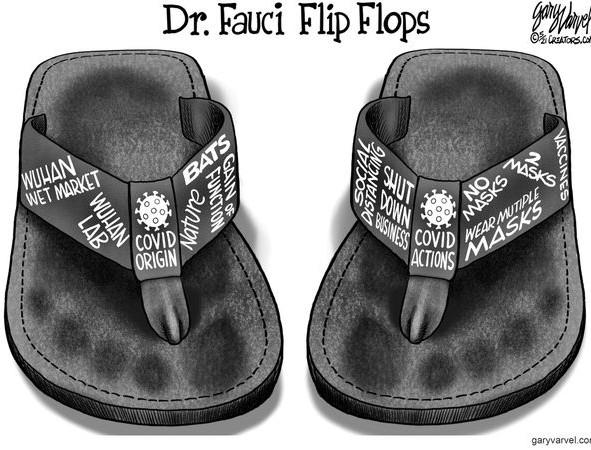 Dr Anthony Fauci's Flip Flops