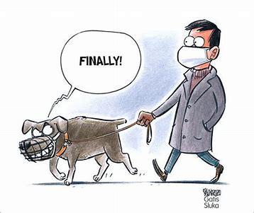 April 10, 2021 - Cartoon - A Dog's response to the Mask