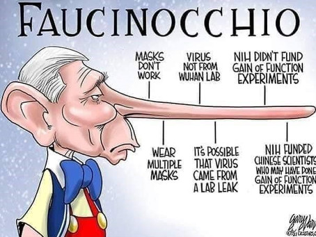 'Faucinocchio' - There is no nose long enough to account for the lies of this pathological liar