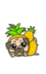 Oki-pineapple-case1.png