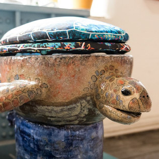 Turtle toilet, Ryan Barrett