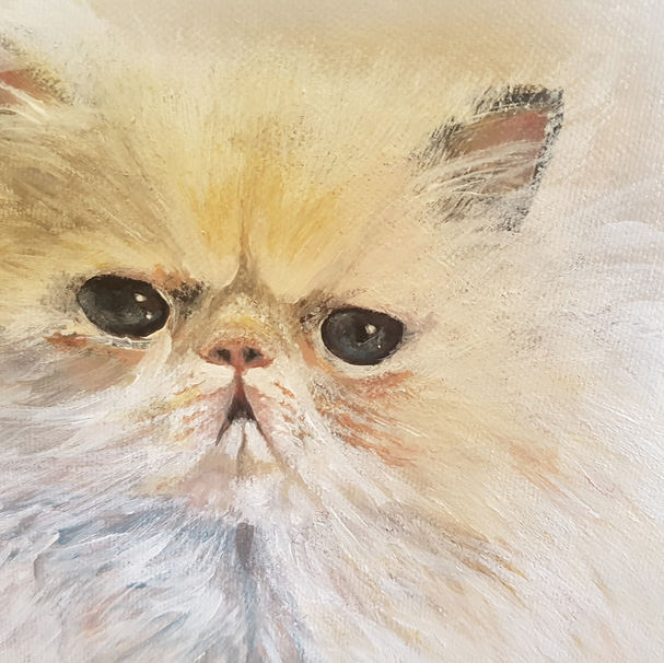 Pretty kitty (2018)