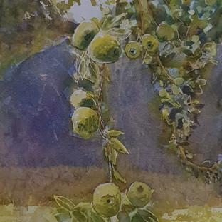 Summer Fruits (2019)