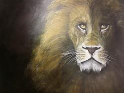 Lion Heart 2015
