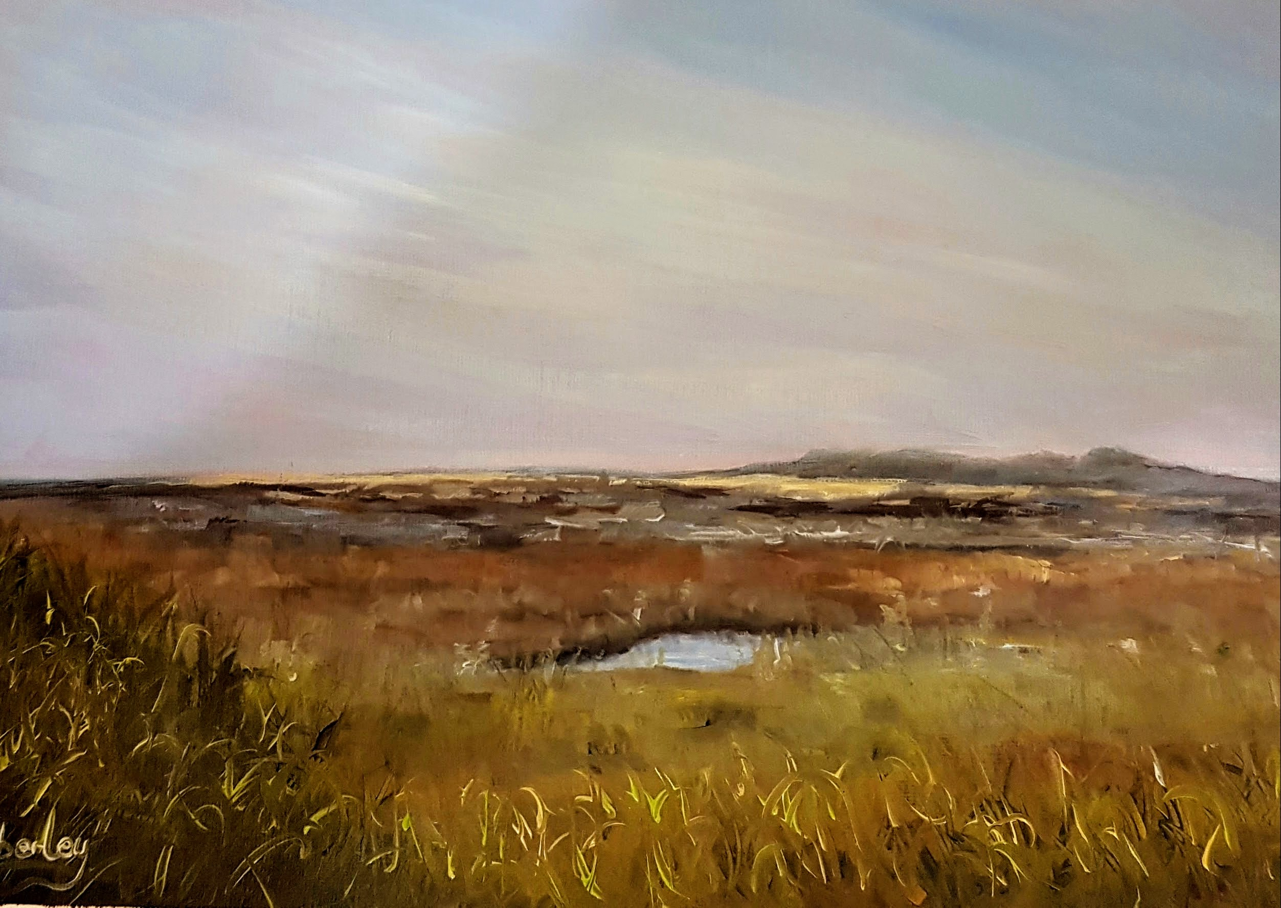 Stiffkey Marshes, Norfolk (2017)