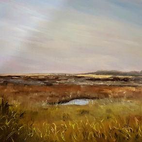 Tiffkey marshes (2017)