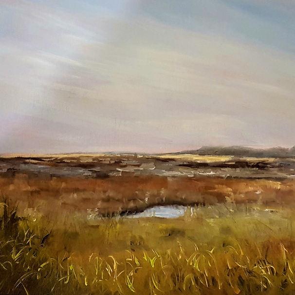 Stiffkey Marshes (2017)
