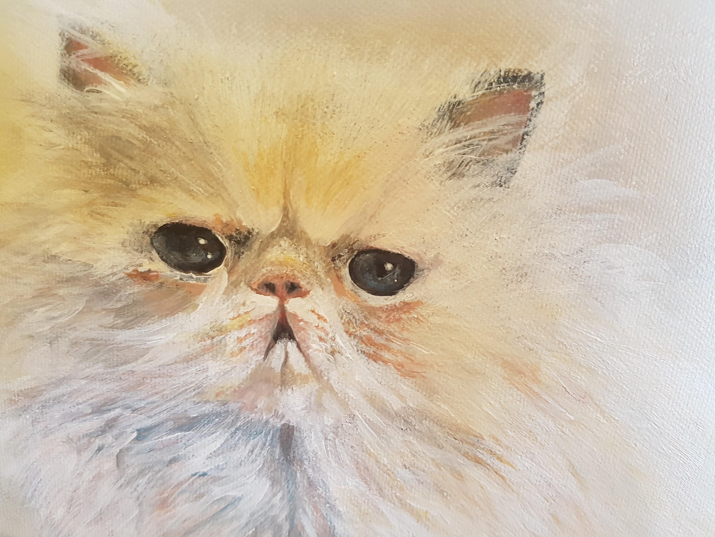 Pretty Kitty(2017)