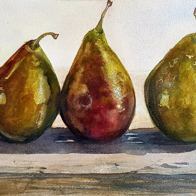 Pear Study (2019)