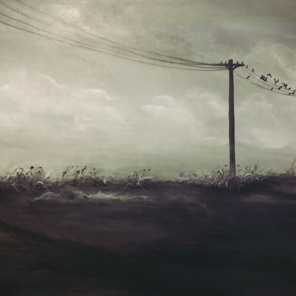 Birds on a Wire (2016)