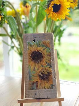 Sunflowers wendy kimberley