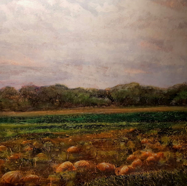 Pumpkin Patch on the A47 (2018)