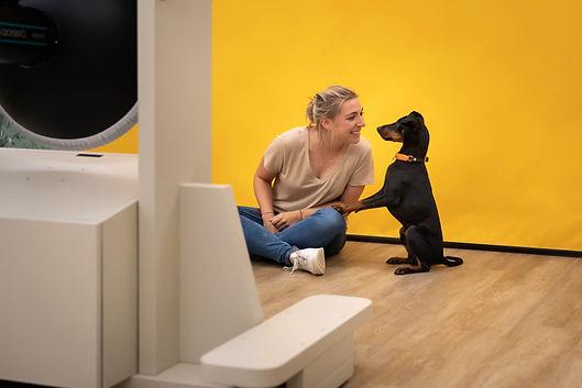 Selfie-Studio-Hund-Knipserei.jpg