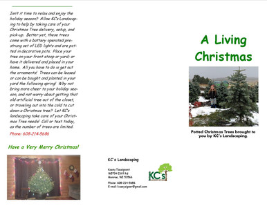 Christmas Tree Pamphlet 2019 1.jpg