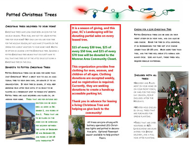 Christmas Tree Pamphlet 2019.jpg