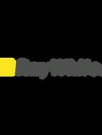 ray white logo.png