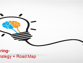 Case Study: Manufacturing- Network Strategy and Road Map