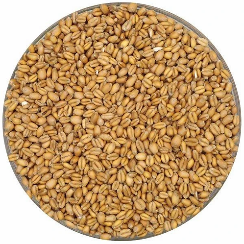 Red Wheat, Briess 1.5L