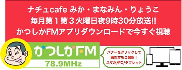 スクリーンショット 2019-03-18 9.21.49.png