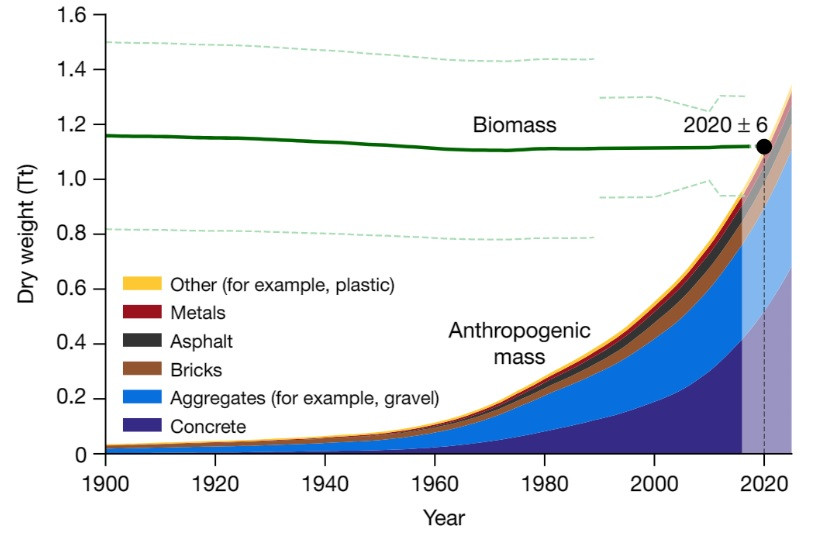Biomass and anthropogenic mass estimates since the beginning of the twentieth century on a dry-mass basis