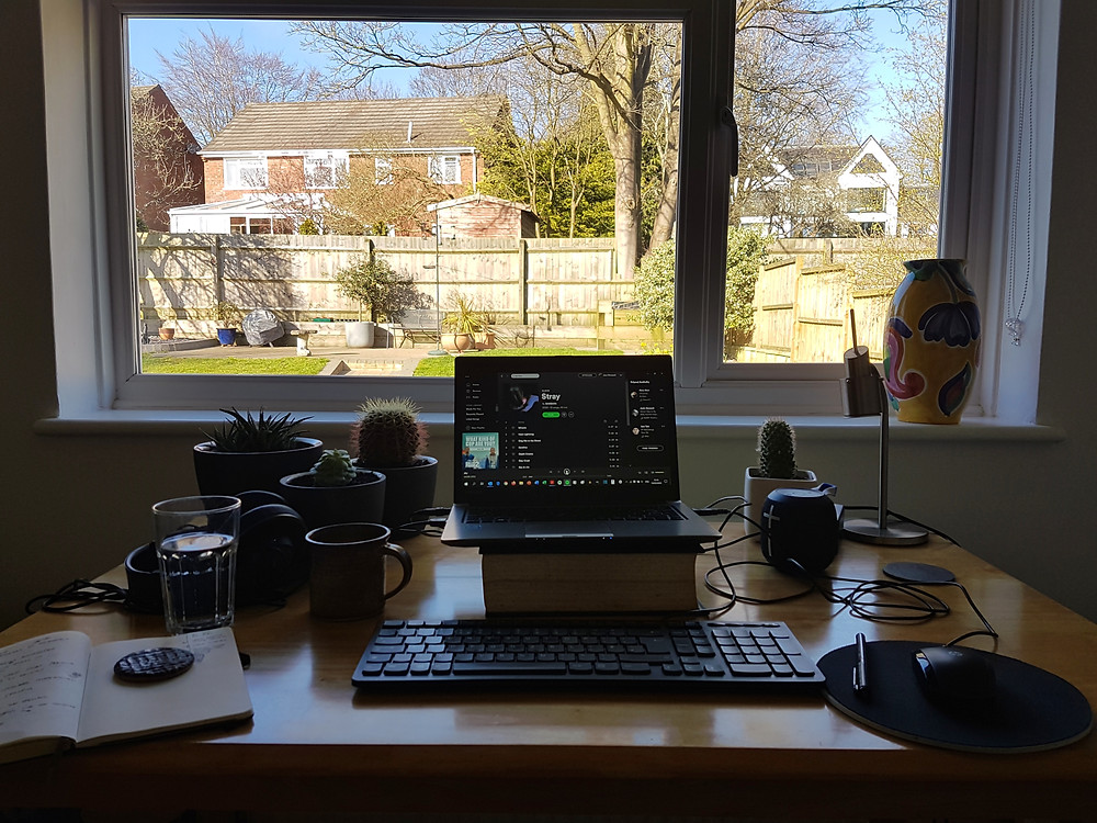 Working from home - view from my window