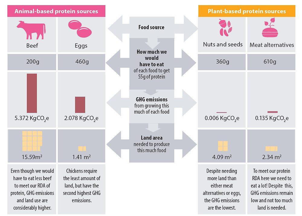 GHG emissions and land use for different food types