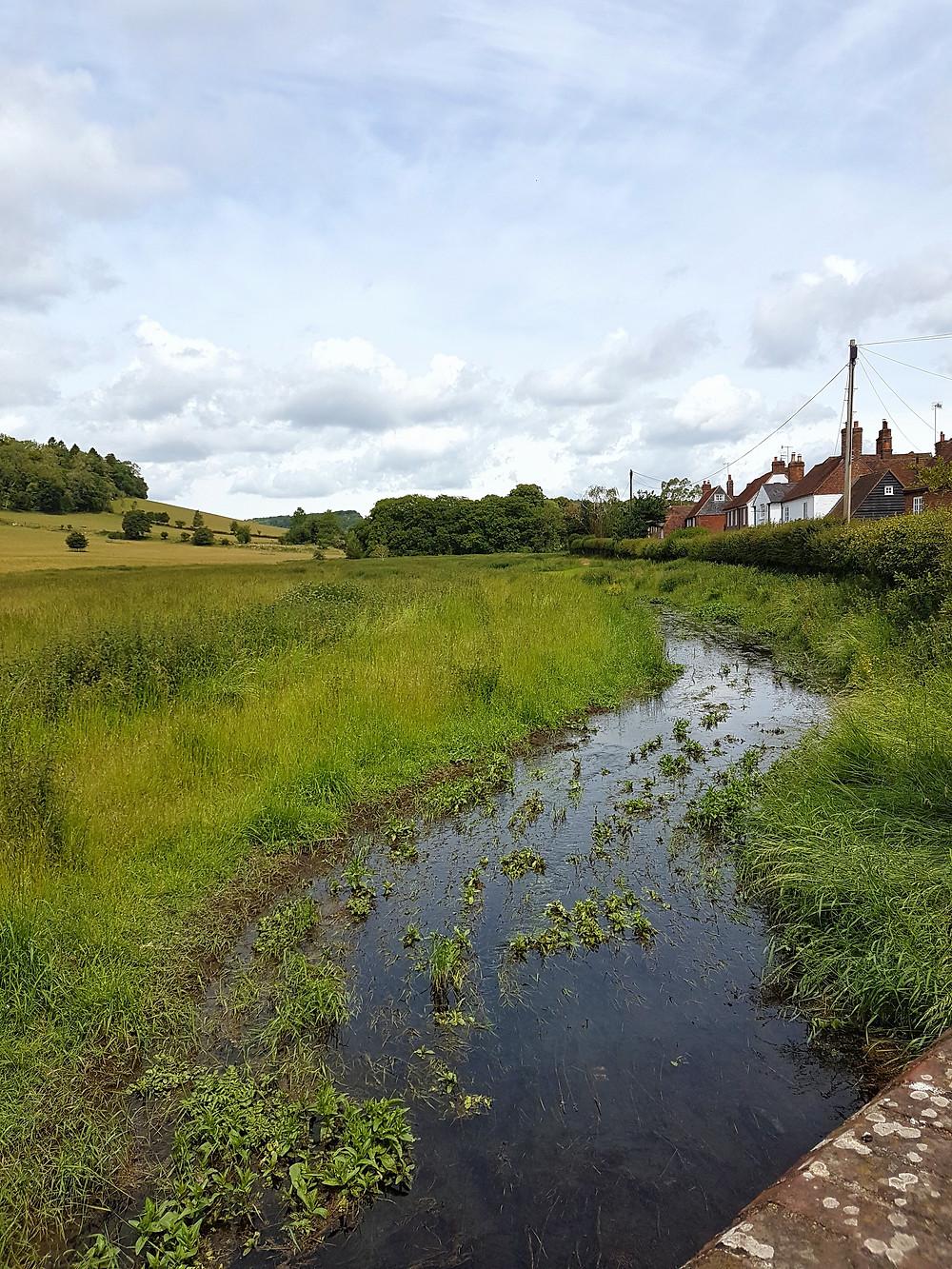 Hambleden Brook chalk stream