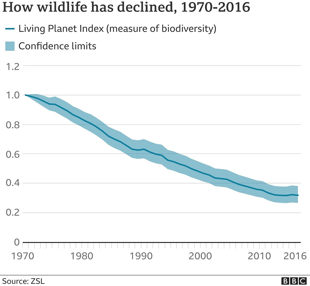animal populations have plunged by 68% since 1970