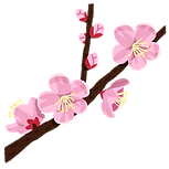 flower_anzu.png