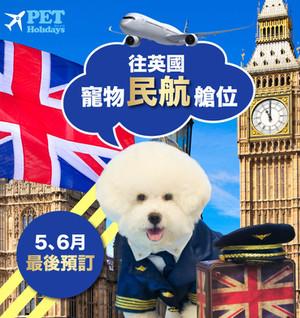 往英國寵物航班
