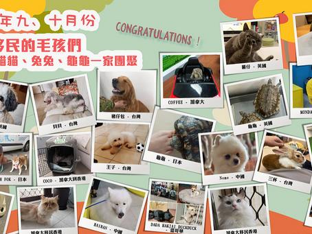 【國際移民及置業博覽】大會指定寵物移民專家