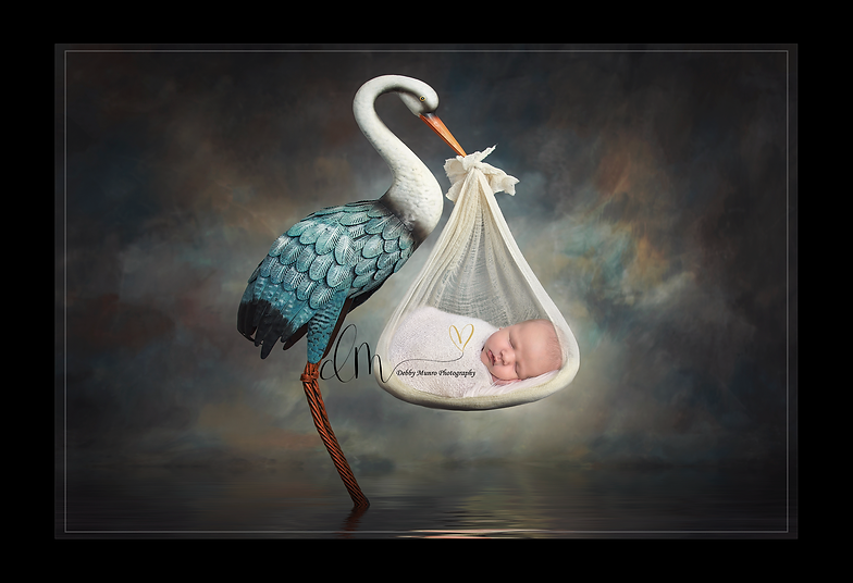 Baby carried by a stork newborn