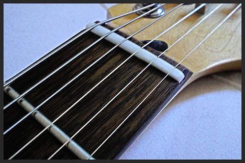 Guitar/Bass Setup via Courier Service