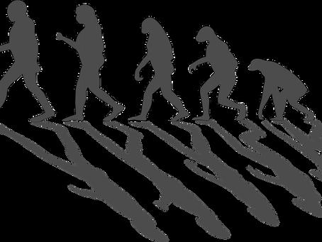 Electricity De-Evolution